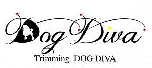 DOG DIVA